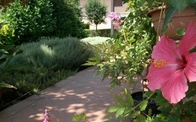 Manutenzione giardini ordinaria o straordinaria