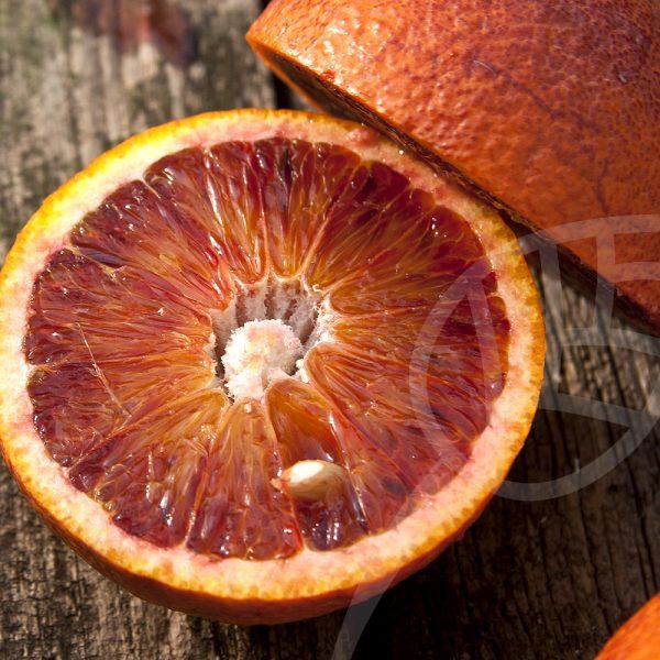"""Citrus sinensis """"Sanguinelli"""""""
